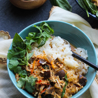 Slow Cooker Chicken and Eggplant Red Curry