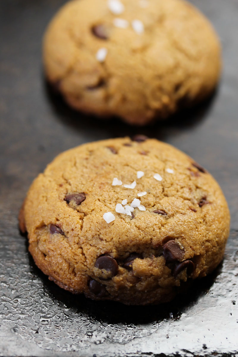 Whole Wheat Chocolate Chip Tahini Cookies | Dishing Out Health