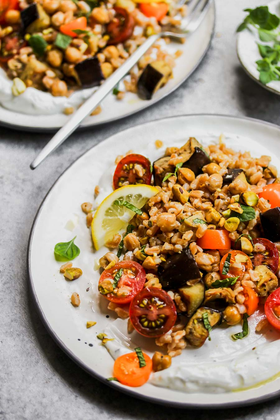 Eggplant and Chickpea Salad with Farro and Minty Yogurt